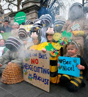 Up to 30 members of Beekeepers Ireland wearing beekeeping suits and veils traveled from the four Provinces of Ireland this Thursday swarmed to protest outside Leinster House against the Heritage Bill PHOTO: Mark Stedman