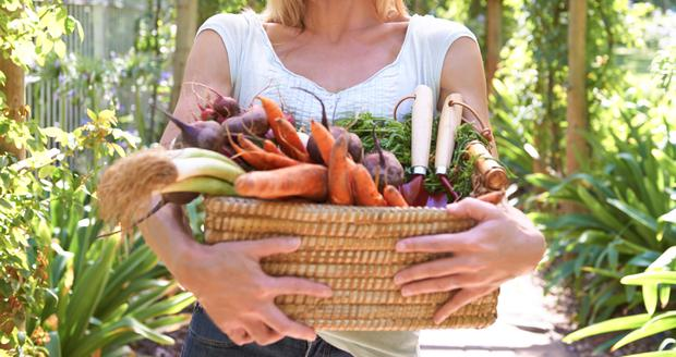 Vegetables are full of nutrients. Stock photo: Getty