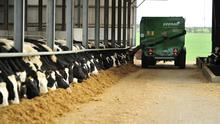 Wise counsel: To reduce feed costs, the aim should be to make top quality silage