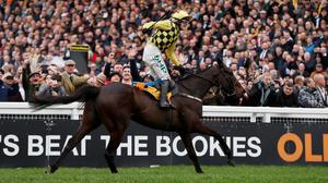 Paul Townend celebrates on Al Boum Photo after winning the 3.30 Magners Cheltenham Gold Cup Chase    Action Images via Reuters/Paul Childs