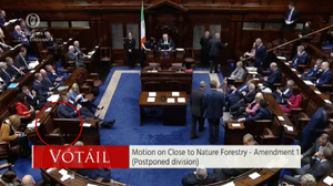 A screengrab from the chamber which shows that Fianna Fáil TD Timmy Dooley was absent from his seat during a Dail vote
