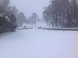 Snow this morning in Coollattin Co. Wicklow. Photo: Bill Nolan