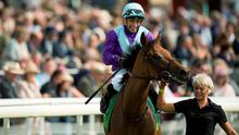 Arabian Queen (pictured here after the Juddmonte International) will not renew rivalry with Golden Horn at Leopardstown on Saturday