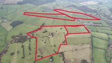 Strong bidding: A 113ac dairy farm at Ballintombay near Rathdrum sold in lots at auction and made €1.01m or almost €9,000/ac.