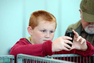 Young boy takes photo of pigs. National Ploughing Championships 2014. Ratheniska, Stradbally, Co. Laois. Picture: Caroline Quinn