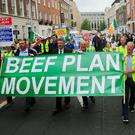 Protest: A march, led by the Beef Plan Movement, at Leinster House