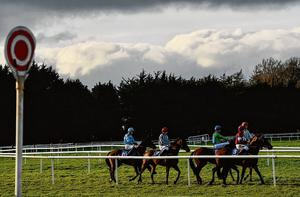 A view of the field before yesterday's Virtual Racing On The BoyleSports App Flat Race at Clonmel yesterday, the final race of the card and on Irish soil for some time. Photo: Seb Daly/Sportsfile