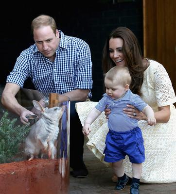 April 2014: Catherine, Duchess of Cambridge holds Prince George of Cambridge as Prince William, Duke of Cambridge look whilst meeting a Bilby called George at Taronga Zoo
