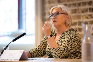 'Major problem': Road Safety Authority chairperson Liz O'Donnell. Photo: Keith Arkins