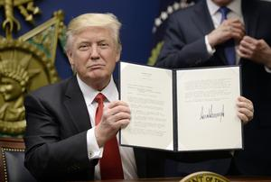 "U.S. President Donald Trump signs executive orders in the Hall of Heroes at the Department of Defense on January 27, 2017 in Arlington, Virginia. Trump signed two orders calling for the ""great rebuilding"" of the nation's military and the ""extreme vetting"" of visa seekers from terror-plagued countries. (Photo by Olivier Douliery-Pool/Getty Images)"