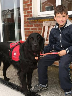 "Luke Gilligan with his guide dog ""Skye"" at their home in Portlaoise. Photo: Michael Scully ."