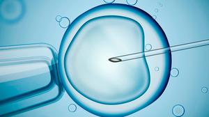 Out of action: IVF clinics across the country have been closed due to the Covid-19 crisis. Stock Image