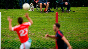 LIMITED VIEWING: Spectators look on during a club challenge between match Fingallians and Clontarf at Lawless Memorial Park in Swords last week