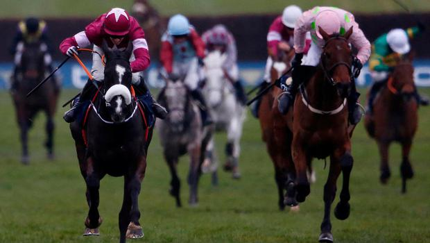 Djakadam (right) will be hoping to go one better than last year when he finished second behind Don Cossack in the Gold Cup. Photo: Alan Crowhurst/Getty Images