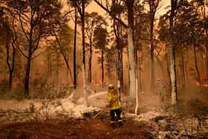Burning issue: The emissions from the bushfire season in Australia could counteract any effect from the coronavirus shutdowns. Photo: PETER PARKS/AFP via Getty Images