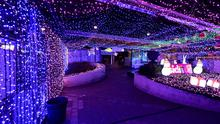 Lights twinkle in a mall in Canberra, Australia where David Richards has set a Guinness World Record by stringing up almost 1.2 million Christmas lights in the center of the national capital, Thursday, Nov. 27, 2014. (AP Photo/AAP Image, Alan Porritt) A