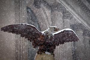 An eagle, used as an architectural detail, is pictured at Grand Central Terminal as it snows in the Manhattan borough of New York January 26, 2015.  REUTERS/Carlo Allegri