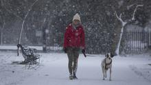 Melanie Krautwvrst out walking her dog Adrian in the snow at Herbert Park today. 18/3/2018 Picture by Fergal Phillips