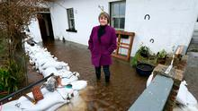 Bridie Willers outside her flooded house at Grannagh, Ardrahan, exactly a year ago Photo: Andrew Downes