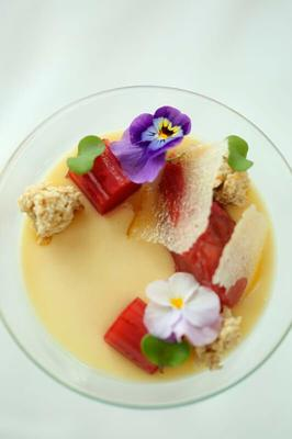 Rhubarb and ginger posset