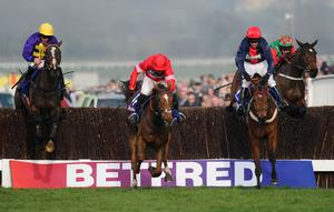 Silviniaco Conti (centre) leads over the last from eventual winner Lord Windermere (left) and Bobs Worth in last year's Gold Cup – Paul Nicholls' charge is favourite to gain his revenge in today's renewal