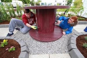 REPRODUCTION FREE 27/05/2015 - NEWS - Bloom 2015 Finishing touches are being made in preparation for the opening of this years Bloom in the Park.  Pictured were Mateusz Wargala and Luke Rothwell from Collinstown Community College, Clondalkin getting ready Bloom 2015.  Picture Nick Bradshaw