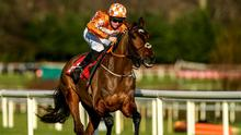 One to watch: The eye-catching Aspire Tower can strike in the Triumph Hurdle for Rachael Blackmore and Henry de Bromhead. Photo: Matt Browne/Sportsfile