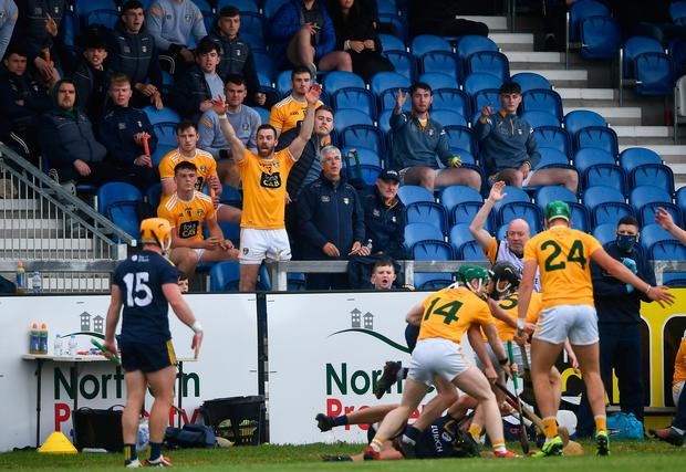 Antrim's Neil McManus appeals from the bench during the Allianz Hurling League Division 1 Group B draw with Wexford at Corrigan Park in Belfast. Photo: David Fitzgerald/Sportsfile