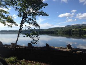 Lough Gill, Co. Sligo. Submitted by Anne Louise Bohan. Send your best views to travel@independent.ie!