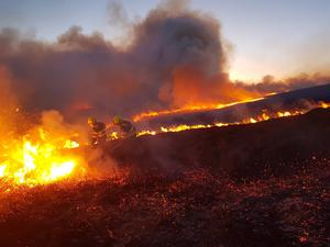 Wildfire: Firefighters work to control a blaze that destroyed 300 hectares in Co Wicklow last week. Photo: courtesy of Coillte