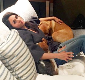 Meghan Markle with her dogs Guy and Bogart. Picture: Instagram