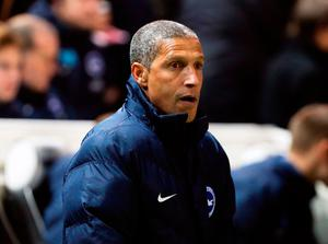 Brighton & Hove Albion manager Chris Hughton. Photo: PA