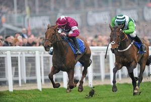 First Lieutenant and Davy Russell pull away from the pack on their way to winning at Cheltenham in 2011
