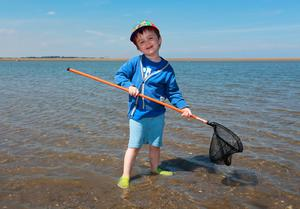 Three and a half year old Arthur Russell from Bayside, pictured as he explores the shallow water at Burrow beach in Sutton. Picture Credit:Frank McGrath 22/6/18