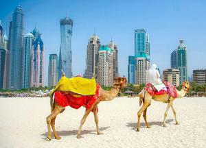 TWO STORIES: In Joseph O'Neill's book, Dubai appears as a paradise, but it's a mirage. The city, for some, is a prison