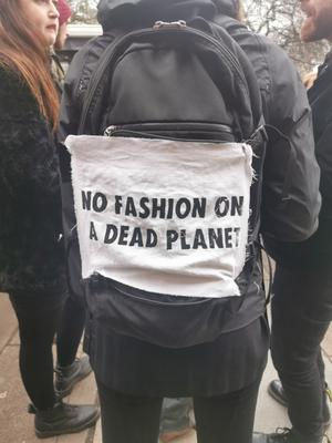 Campaigners from the environmental group, Extinction Rebellion, descended on The Strand Photo: Bairbre Power