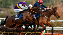 1 February 2020; Latest Exhibition, left, with Bryan Cooper up, jump the last on their way to winning The Nathaniel Lacy & Partners Solicitors 50,000 Cheltenham Bonus For Stable Staff Novice Hurdle from second place Longhouse Poet, with Jamie Codd up, during Day One of the Dublin Racing Festival at Leopardstown Racecourse in Dublin. Photo by Matt Browne/Sportsfile