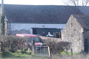 Investigation: Forensic officers at the scene of the fatal stabbing at a farmhouse in Bankhall Road, near Larne, Co Antrim. Photo: Niall Carson/PA