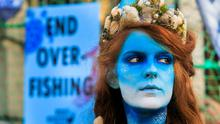 Message: Bodypainted mermaid Ceara Carney during a protest calling on the Government to uphold the law and end overfishing. Photo: Gareth Chaney, Collins