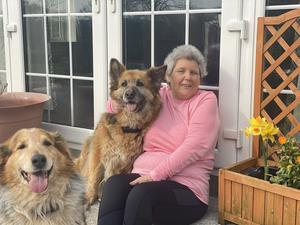 In remission: Amanda Lattimore with her dogs at her home in Co Cavan