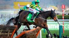 Barry Geraghty is pictured nearing his victory in the Stan James Champion Hurdle Challenge Trophy on Champion Day at Cheltenham Racecourse, Cheltenham (Tim Ireland/PA Wire)