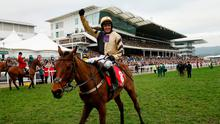 Britain Horse Racing - Cheltenham Festival - Cheltenham Racecourse - 16/3/17 Ruby Walsh celebrates winning the 3:30 Sun Bets StayersÄô Hurdle on Nichols Canyon Action Images via Reuters / Andrew Boyers Livepic EDITORIAL USE ONLY.