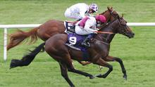 He Knows No Fear wins at Leopardstown