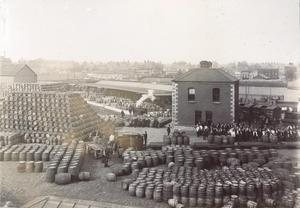 Labourers pose in groups in the Cooperage yard on lower level of St. James`s Gate Brewery, c.1906