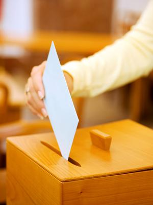 'Elections are generally defined by what we vote for, but they can also reflect what we vote against' (stock photo)