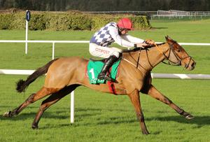 Galvin, here winning at Navan last year, is likely to get plenty of support in the Plate