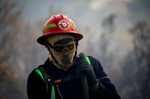 A firefighter carries a hose as teams battle to prevent a flare up of a bushfire that burnt several houses and threatened vineyards in Somerset West, near Cape Town, South Africa January 4, 2017. REUTERS/Mike Hutchings