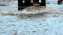 Rising levels: A litter bin almost submerged in a flood Photo: PhotopressBelfast.co.uk / Alan Lewis / Justin Kernoghan