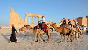 Tourists ride camels in the historical city of Palmyra, September 30, 2010.  REUTERS/Nour Fourat