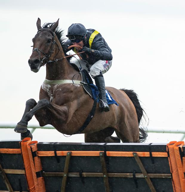 Fiddlerontheroof is fancied for Colin Tizzard and Robbie Power. Photo: Edward Whitaker